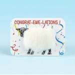 4119 Woolly Fridge Magnet-CONGRAT-EWE-LATIONS