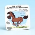 5217 HORSE ANATOMY Coaster