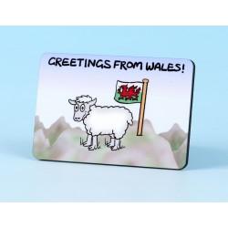 6128 Fridge Magnet SHEEP ON MOUNTAIN WALES