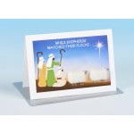 S162 Sheep Christmas  Card-WHILE SHEPHERDS WATCHED THEIR FLOCKS